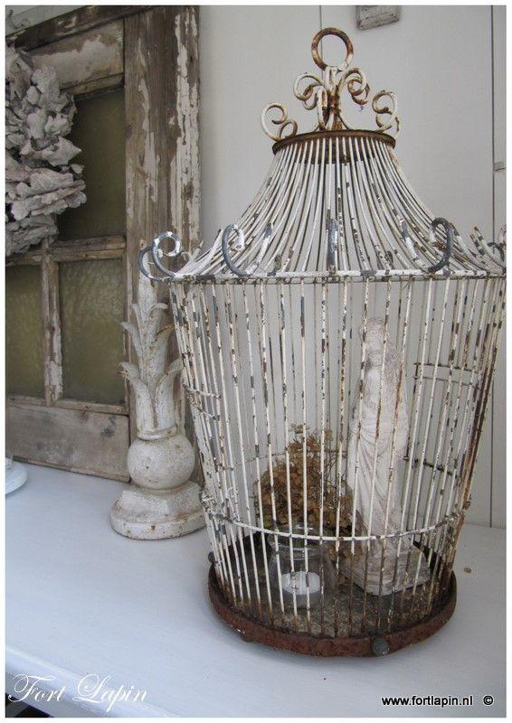 Antique White Bird Cage Antique Bird Cages Vintage Birds