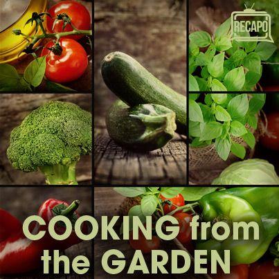 The Chew: Garden Girl Patti Moreno Pernil & Sofrito Sandwich Recipe