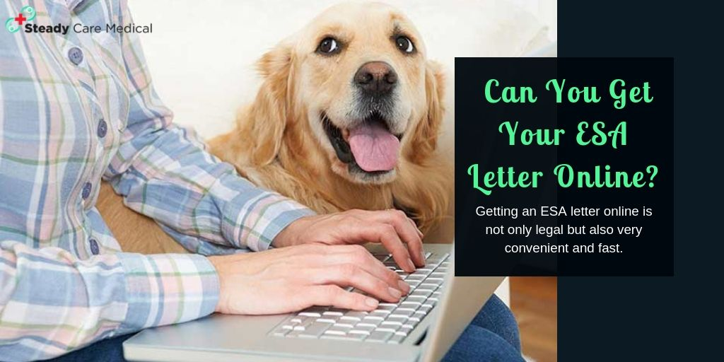 Getting an ESA letter online is not only legal but also