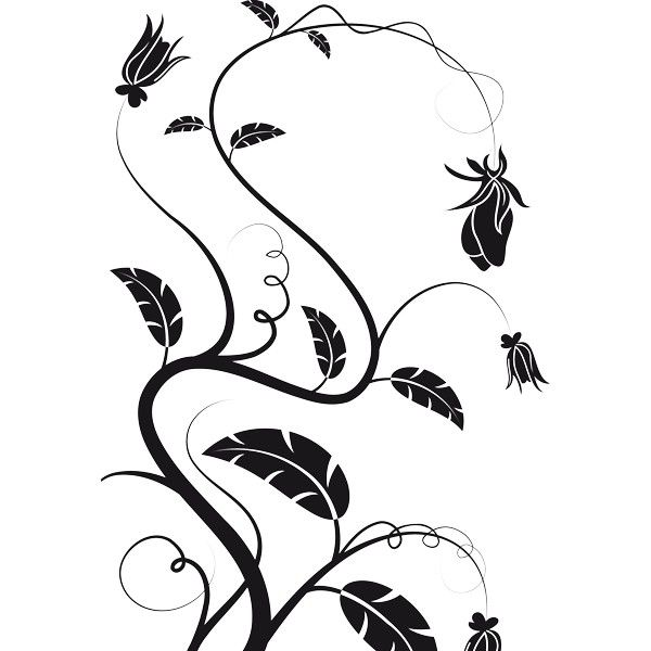 Enredaderas De Flores Dibujos Imagui Enredaderas Con