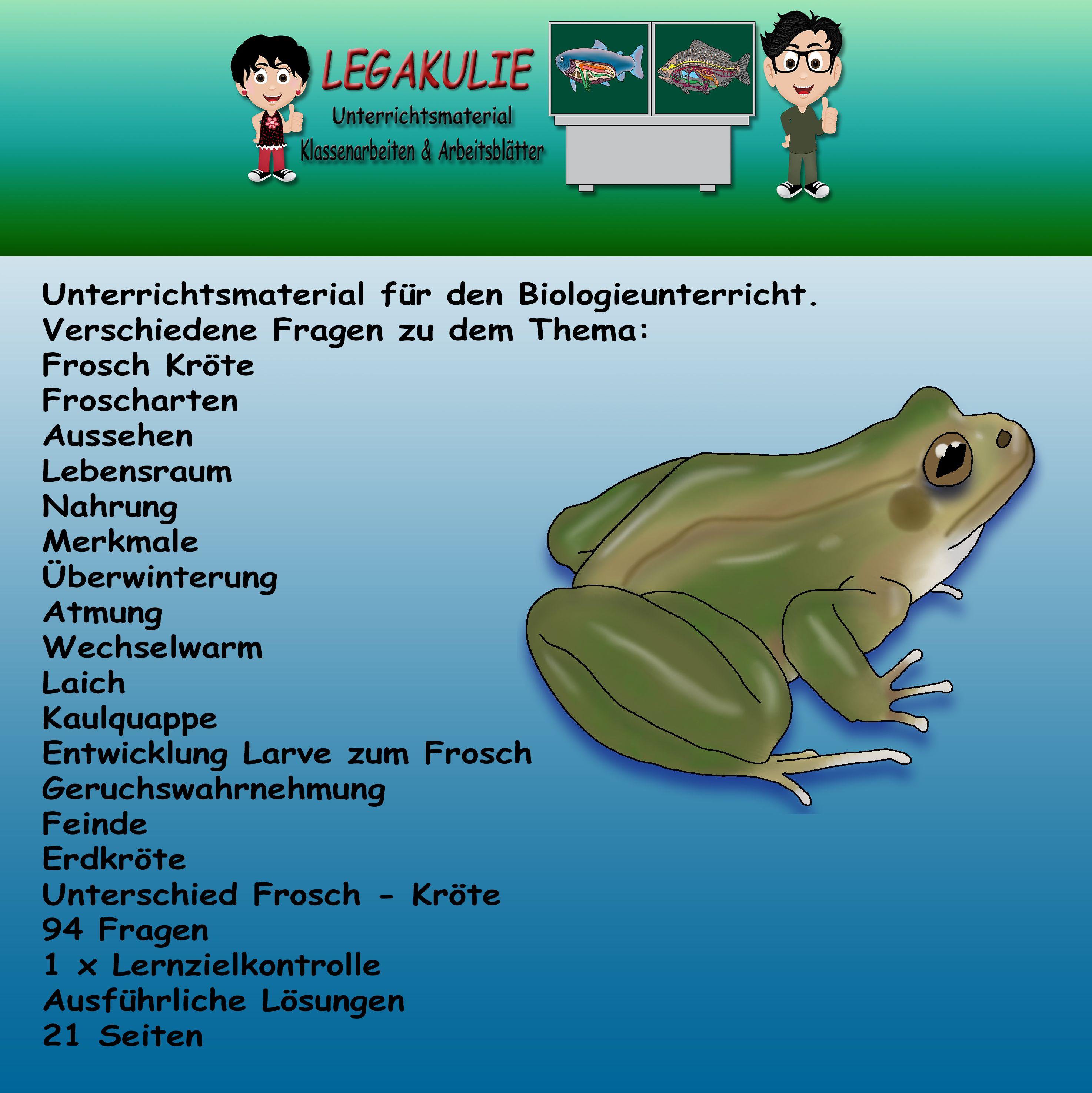Verschiedene Fragen Zu Dem Thema Frosch Krote Froscharten Aussehen Lebensraum Nahrung Merkmale Uberwinterung Atmung Wechselwar Klassenarbeiten Frosch Biologie