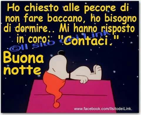 Buonanotte Buonanotte Immagini Divertenti E Foto Divertenti