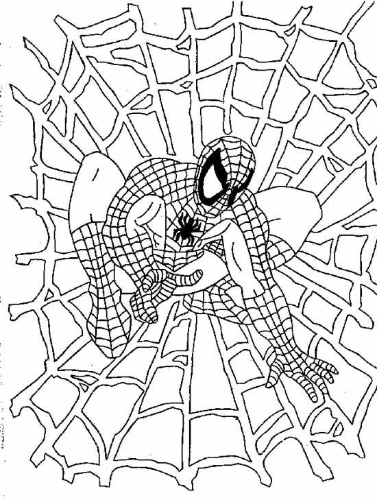 Marvel Superheroes Para Colorear Spiderman Dibujo Spiderman