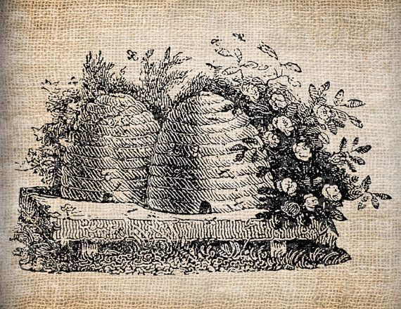 The Bees Reverie Antique Bee Skep Hive Digital Download For Tea Towels