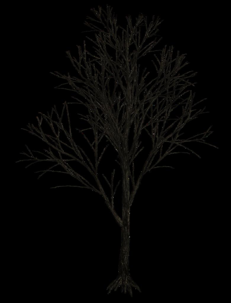 Dark Trees Png Stock 07 Dark Tree Winter Trees Tree Textures