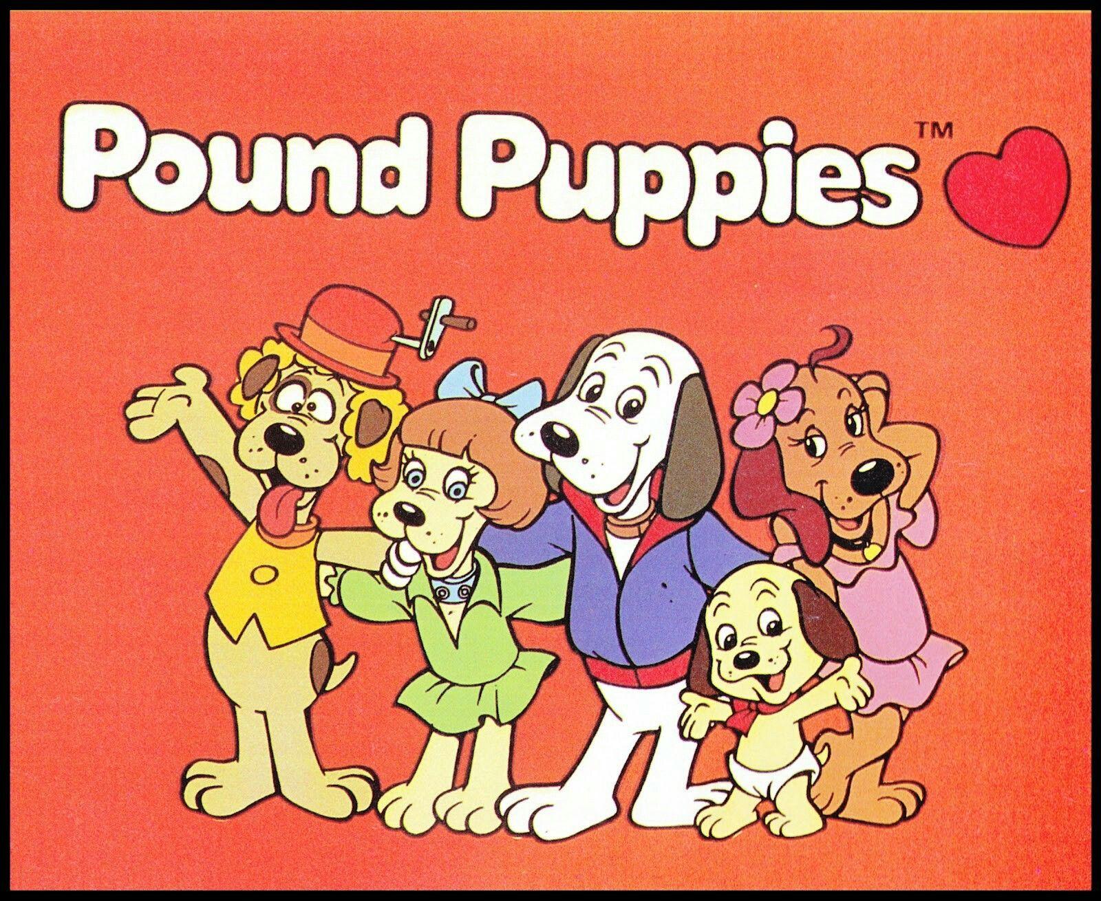 Pound puppies 80 s cartoons Pinterest