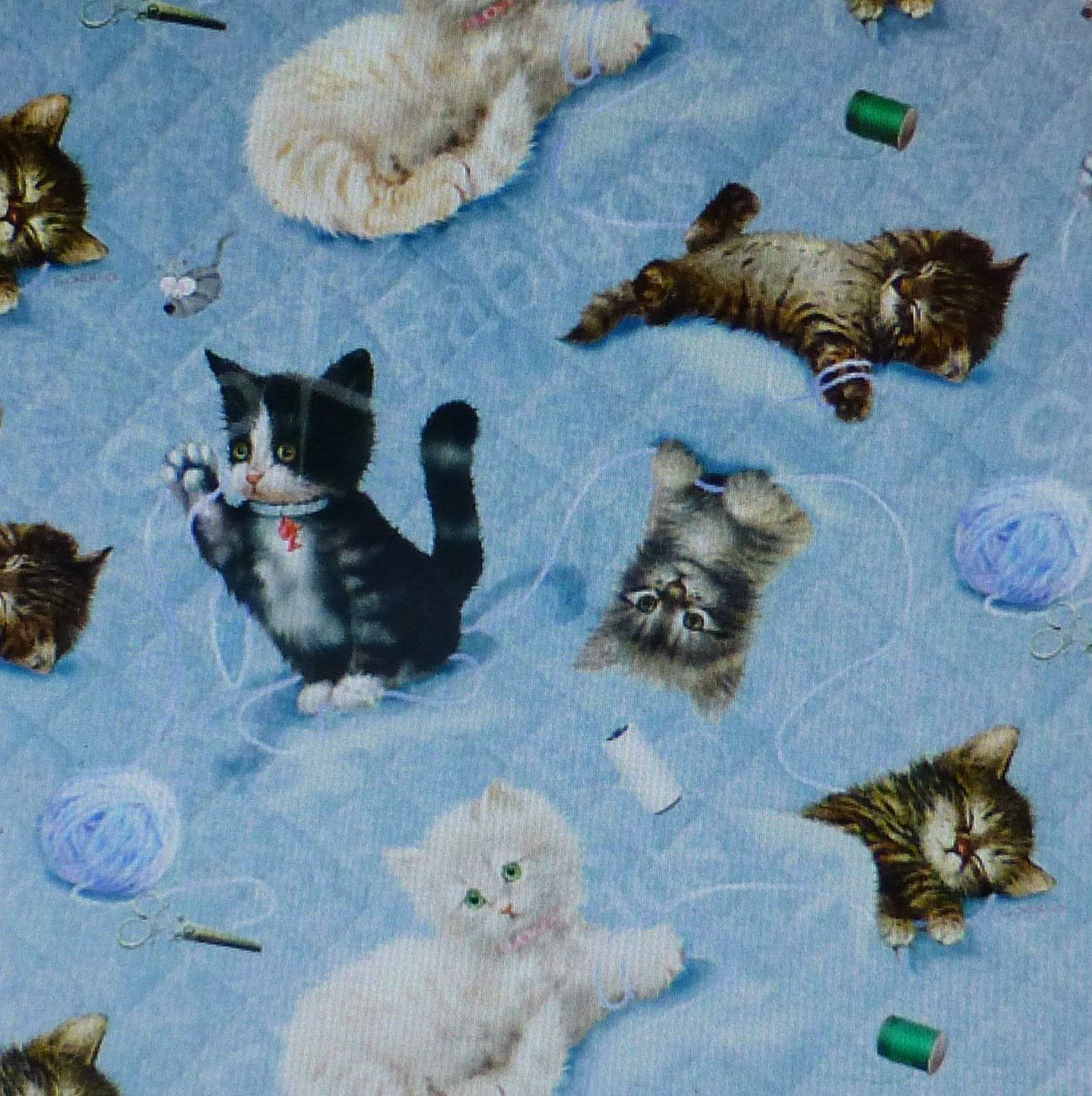 Il Fullxfull 882523028 J125 Jpg 1226 1230 Cottage Quilt Cat Fabric Quilt Shop
