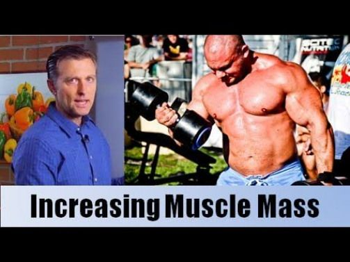 Lose weight and increase muscle mass