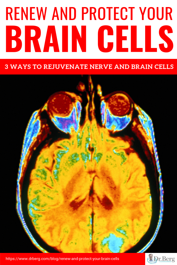 Renew And Protect Your Brain Cells Infographic Natural Health Your Brain Health And Wellness