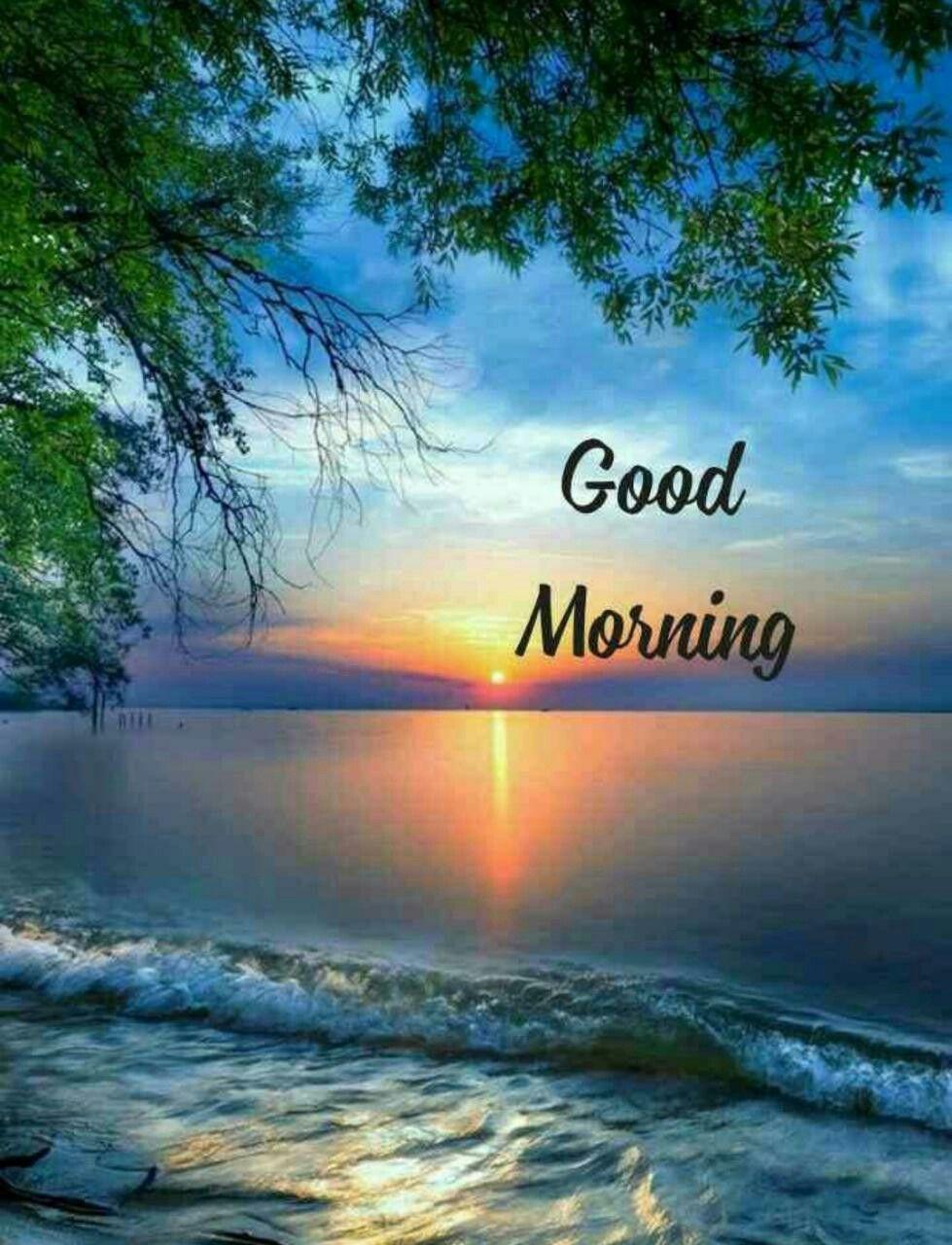 Good Morning Sweetheart In 2020 Good Morning Beautiful Pictures Good Morning Nature Good Morning Picture