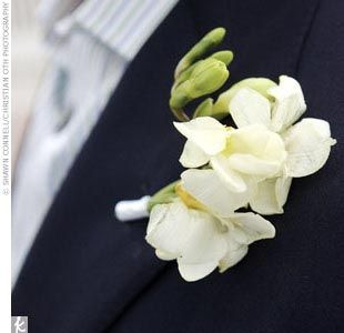 Simple white flower boutonnieres beach wedding etc pinterest diana john a tented wedding in seaside fl wedding albumswhite flowersblue mightylinksfo Image collections