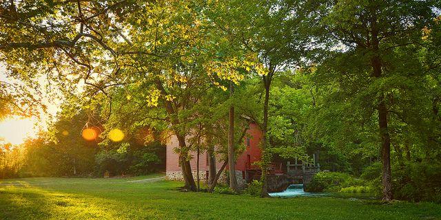 Springtime Sunset