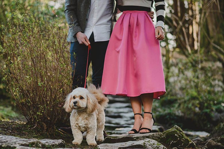 Engagement session including a pet at Killarney