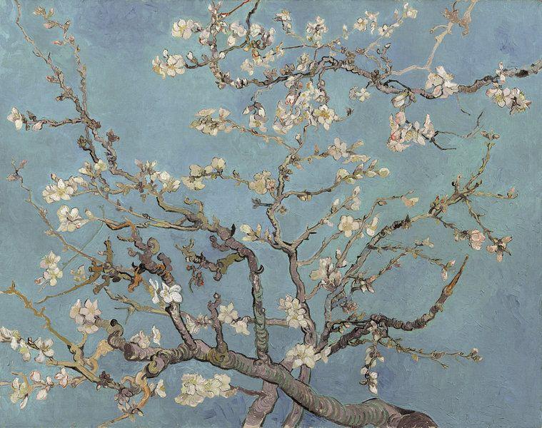Amandelbloesem Van Vincent Van Gogh Zacht Blauw Early Dew Van Meesterlijcke Meesters Op Canvas Behang En Meer Van Gogh Almond Blossom Van Gogh Art Van Gogh Wallpaper