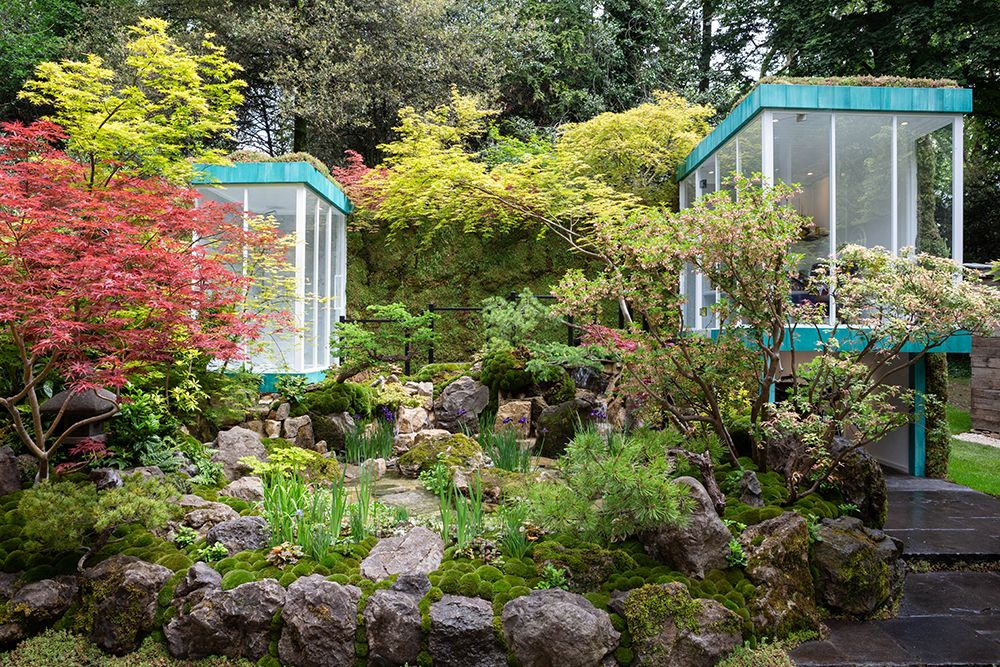 Green Switch show garden at the Chelsea Flower Show 2019