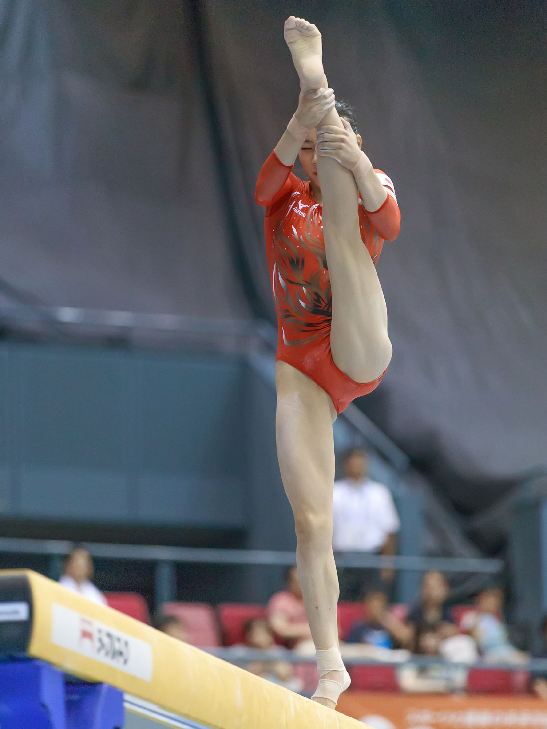 Pin by James McMillen on Gymnastics   Gymnastics