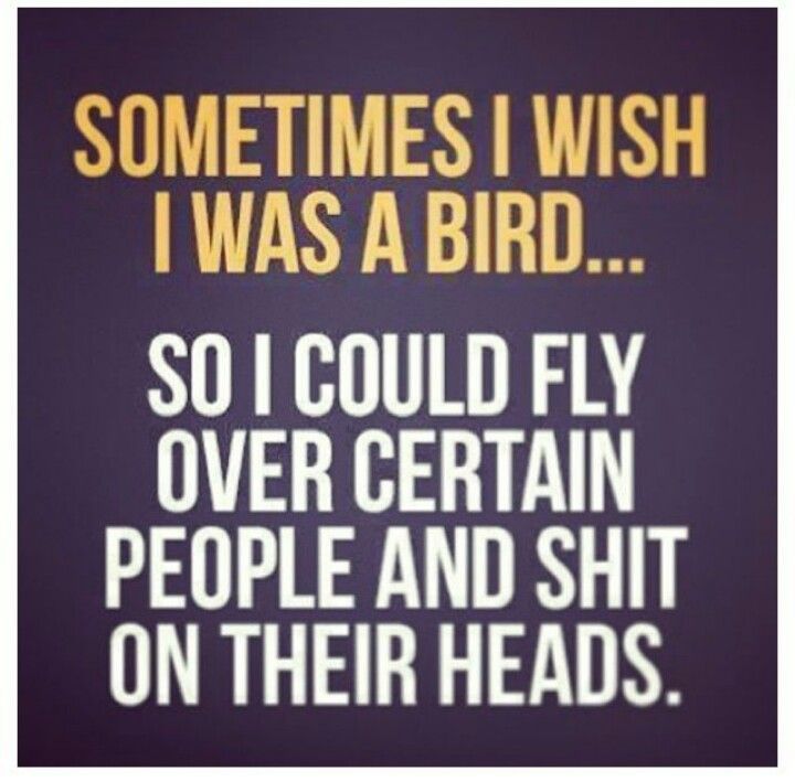 I wish i was a bird....