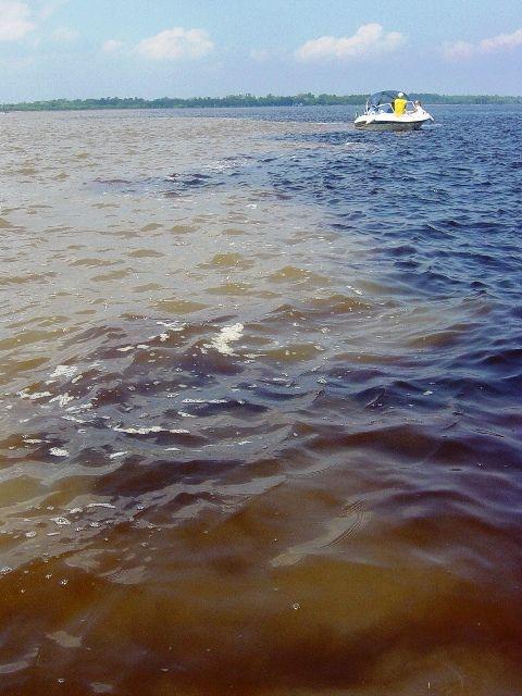 Amazonas, Brasil (2003)