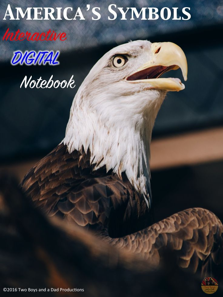 American Symbols Interactive Digital Notebook For Google Drive