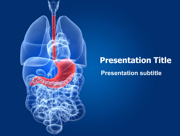 Pin By Medical Ppt Templates On Digestive System Templates