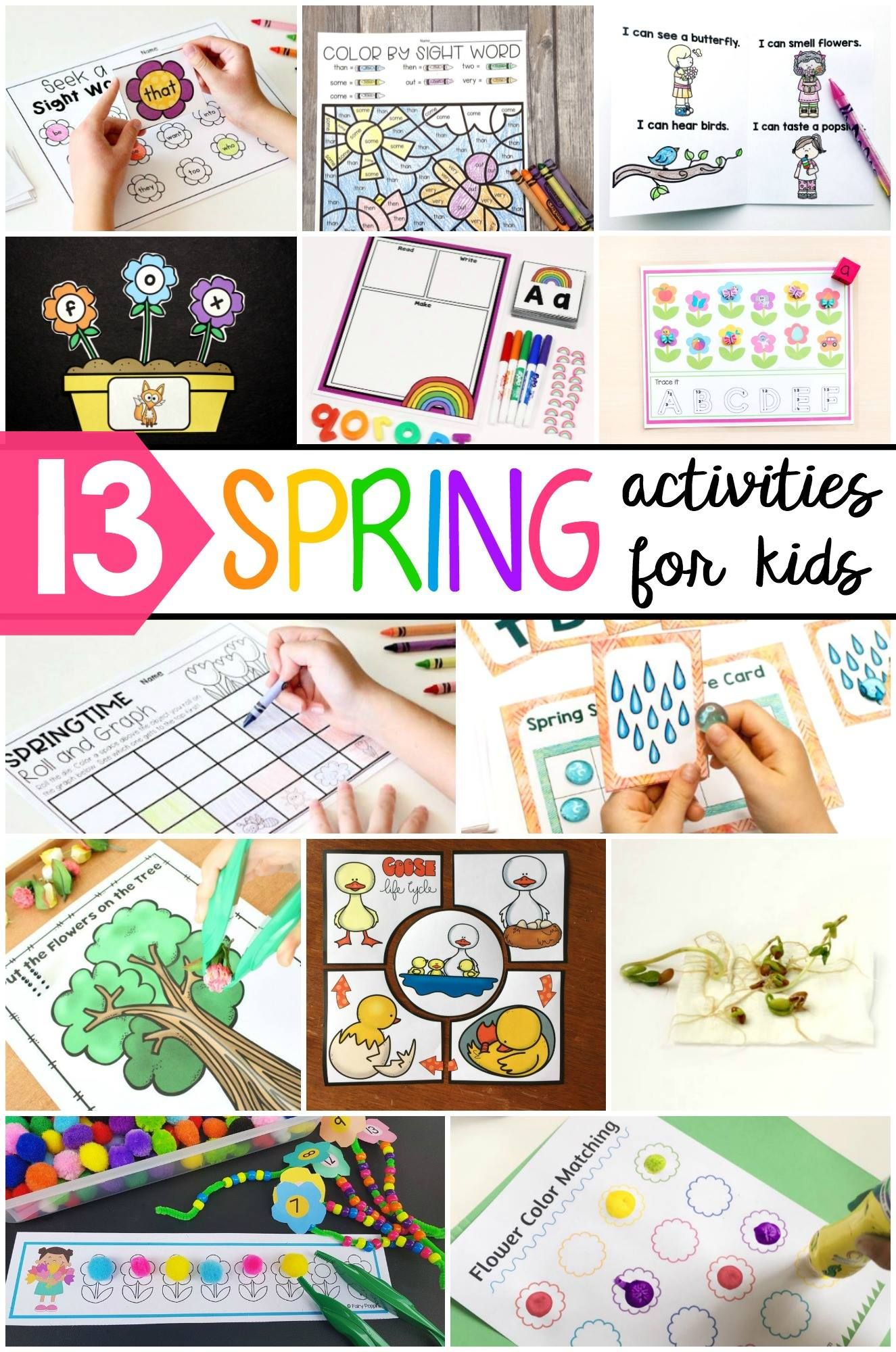 Editable Spring Sight Word Activity