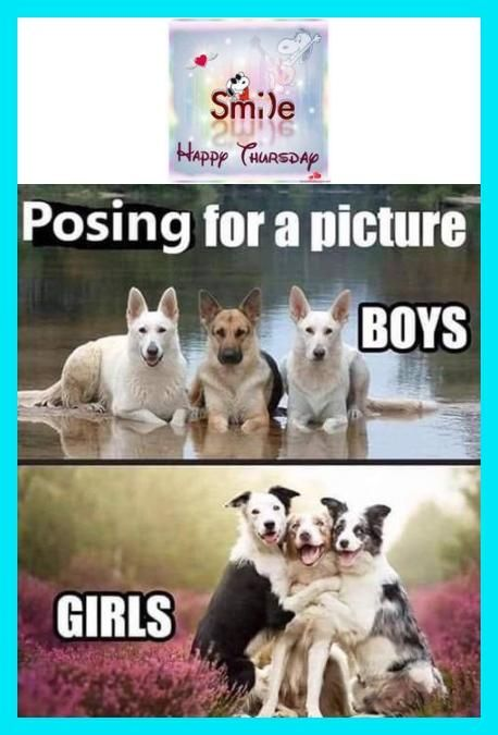 New Funny Good Morning Memes Humor Minions Quotes Ideas Thursday-350 Humor Humor - Thursday