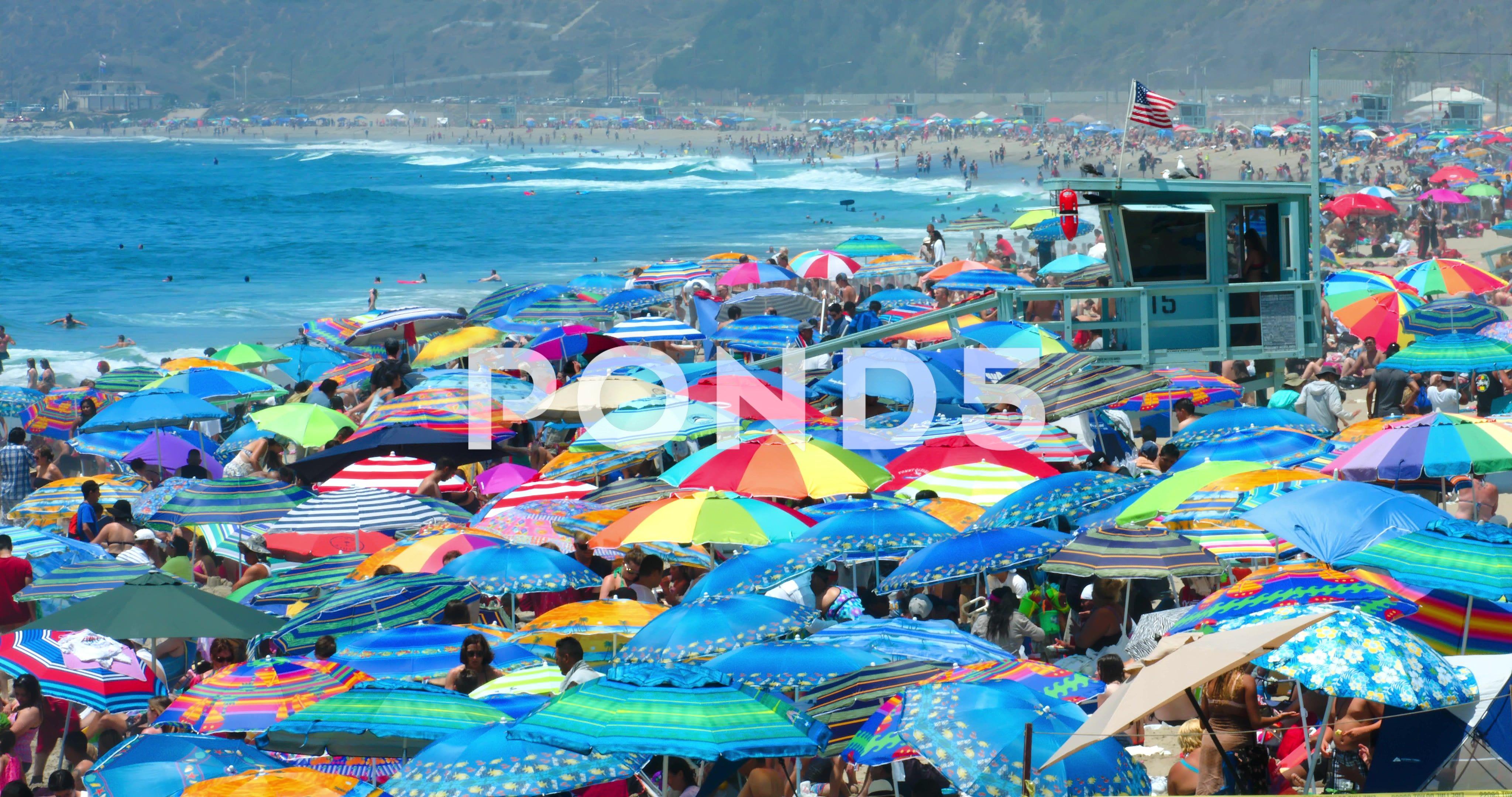 People Swim In The Pacific Ocean In Santa Monica Beach Los Angeles 4k Raw Stock Footage Ocean Santa Moni Los Angeles Beaches Pacific Ocean Santa Monica Beach