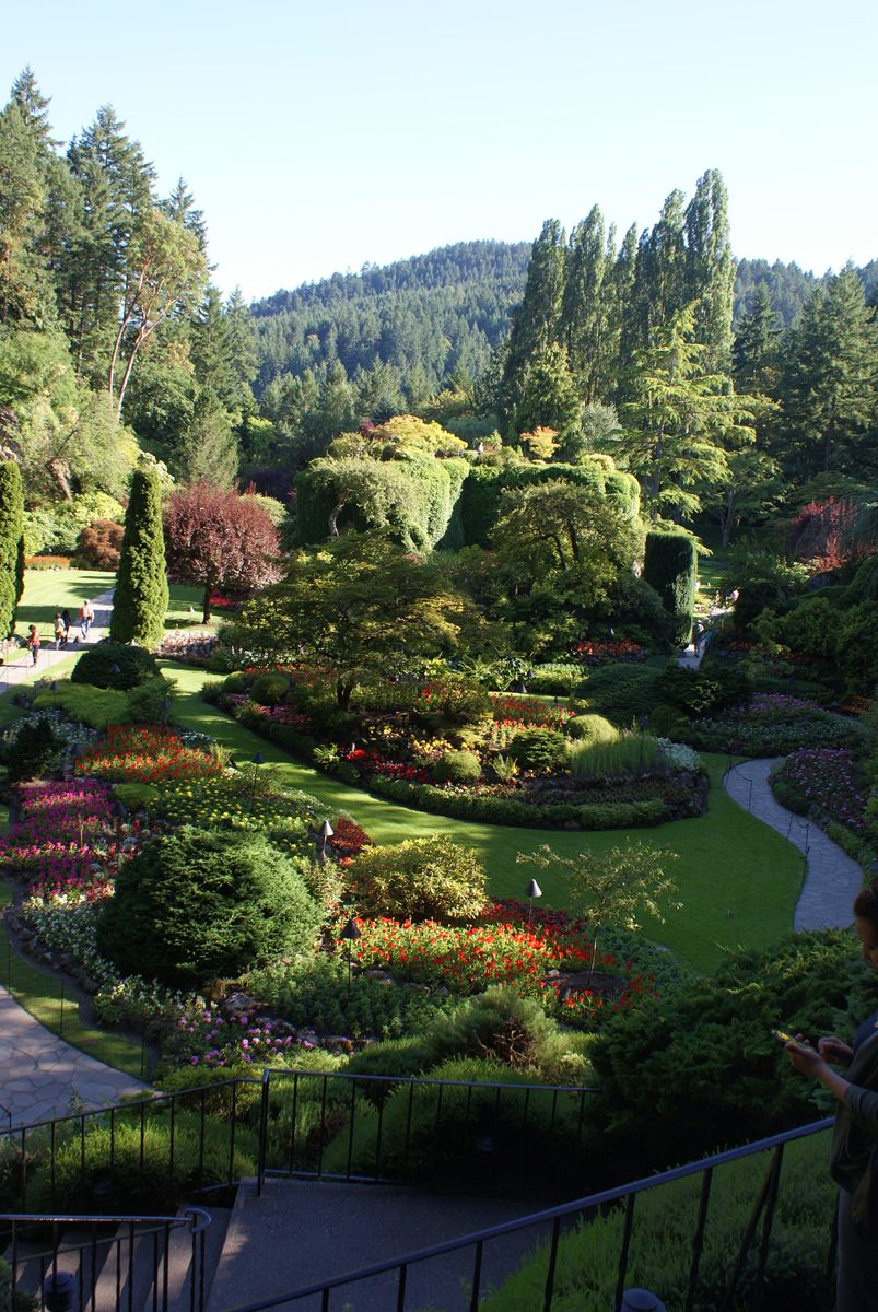 Cherry's visit to Butchart Gardens, Day 1 #butchartgardens