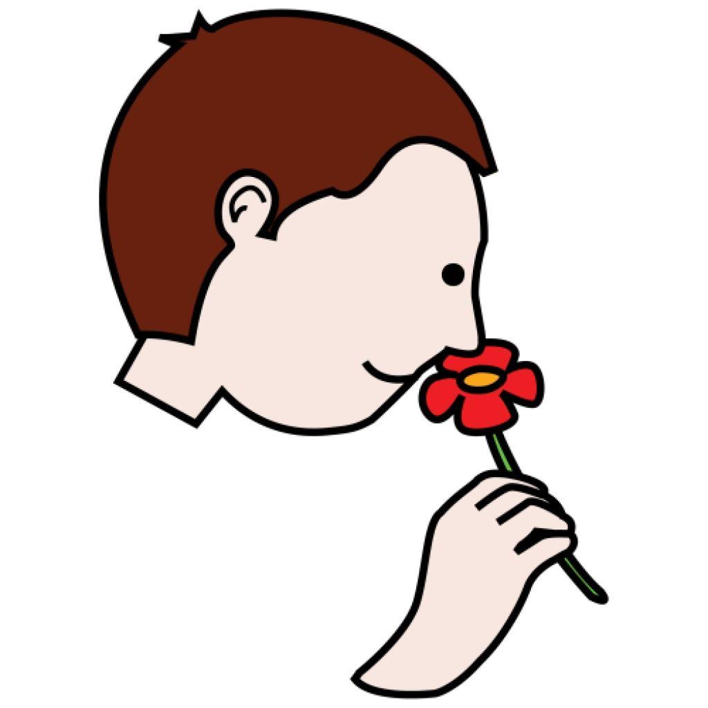 Clipart Nose Smelling Clipart Nose Smelling Smell Clipart