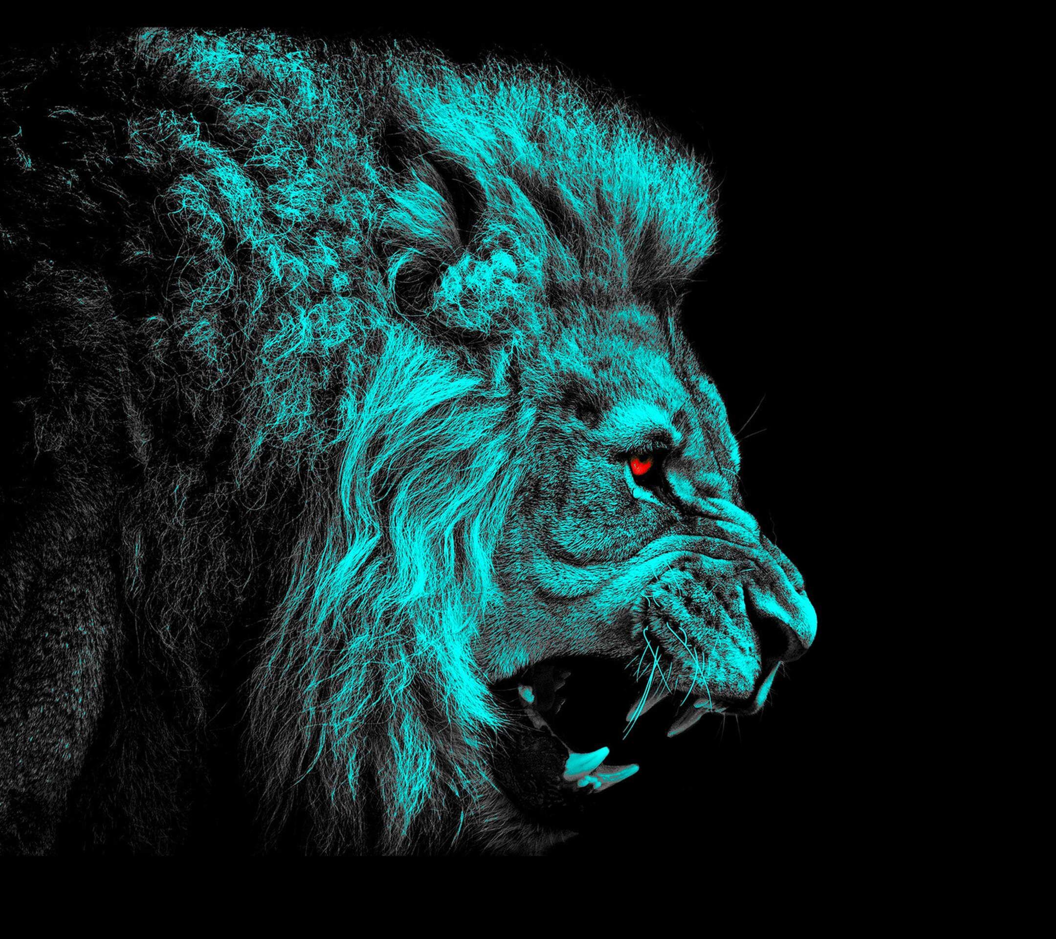 Animaux Lion Fond d'écran | Lion noir et blanc, Fond ecran animaux, Lion rugissant