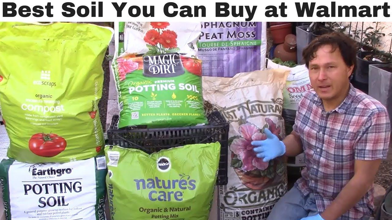 Best Vegetable Garden Soil You Can Buy At Walmart What 400 x 300