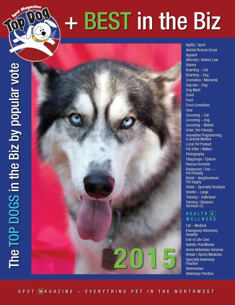 Pin by Spot Magazine on Magazine Covers Dog daycare, Dog