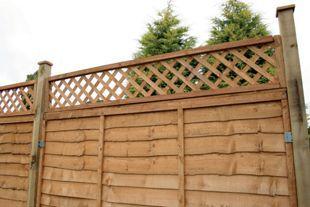 Wickes Fence Top Trellis Diamond Lattice Autumn Gold 1 83m X 300mm Wickes Backyard Trellis