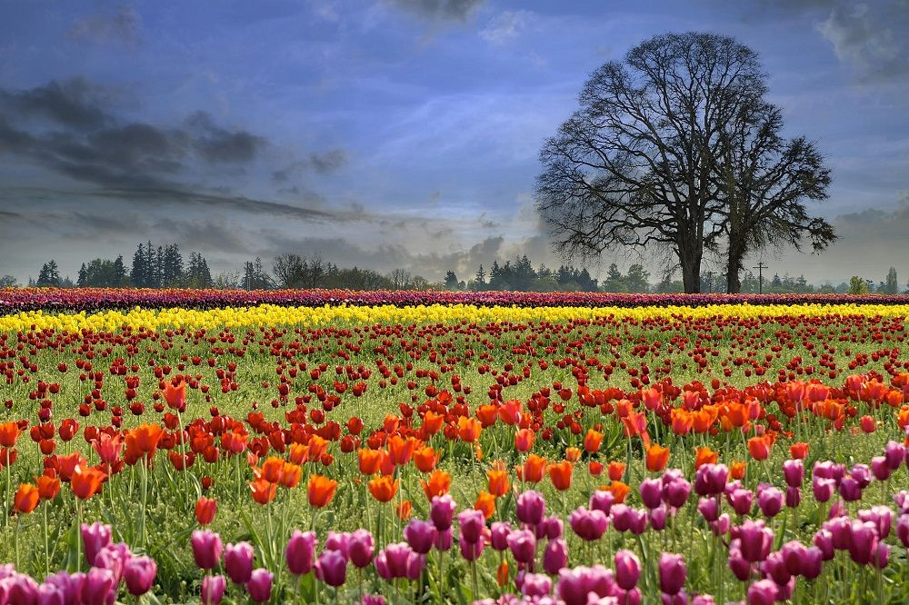Top 20 Colorful Inspiring Landscapes Photography