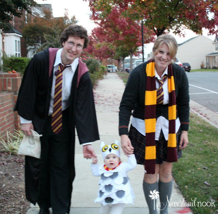 Baby Hedwig Mom and Dad Potter created their baby Hedwig costume with just felt and scraps of fabric.  sc 1 st  Pinterest & These Harry Potter Halloween Costumes For Kids Are the Most Magical ...
