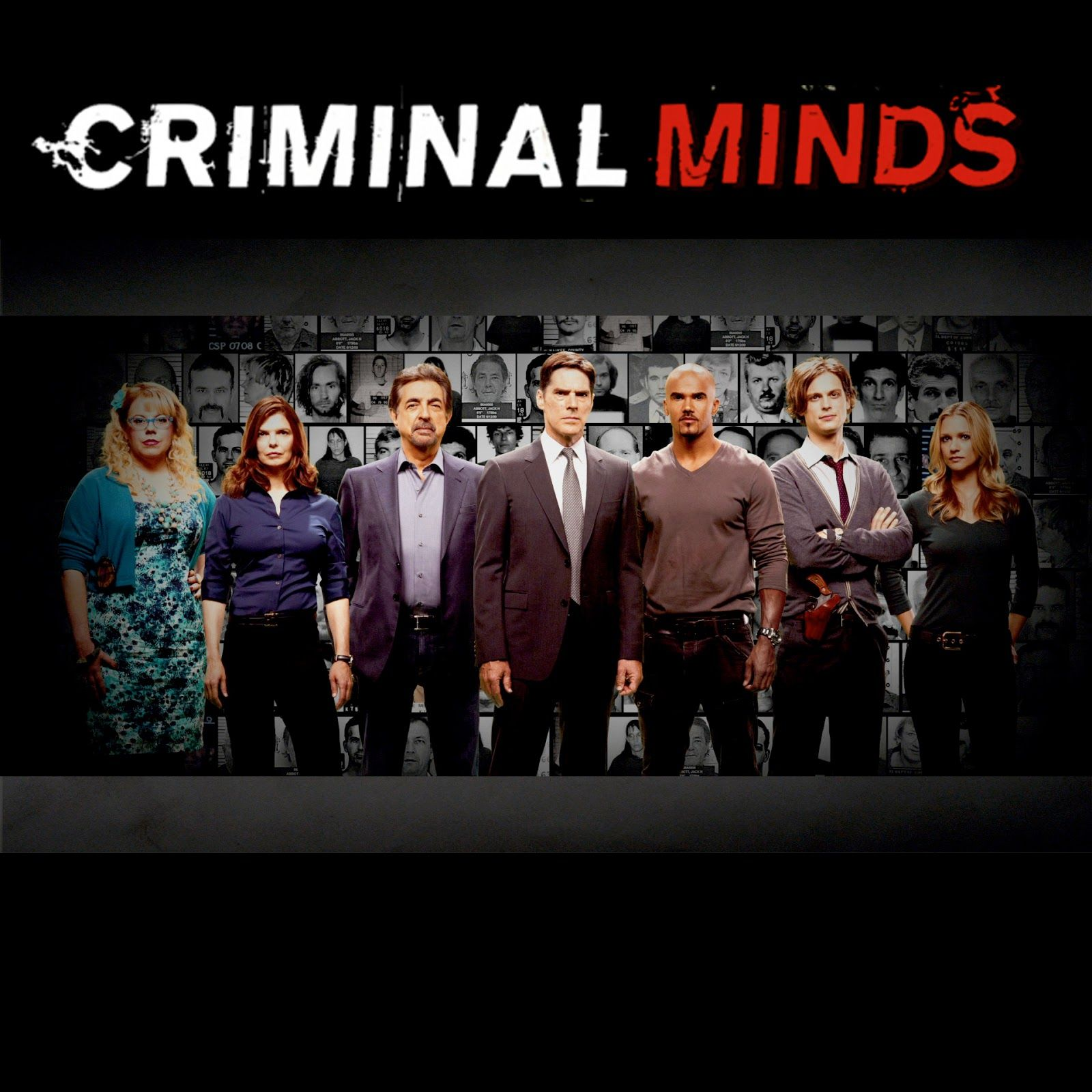 criminal minds Watch Criminal Minds Season 8 Episode 13