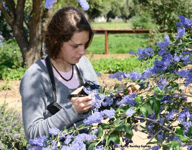 862170aa76c4dfa35bcc8808e294a3df - University Of California Master Gardener Program