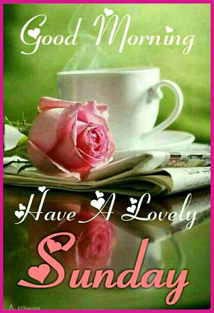 Lovely Sunday Saved by SRIRAM   Beautiful good morning wishes ...