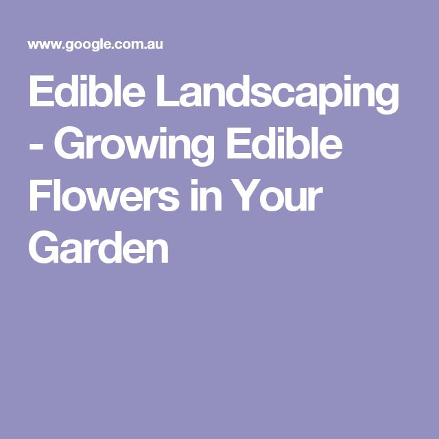 Edible Landscaping - Growing Edible Flowers in Your Garden