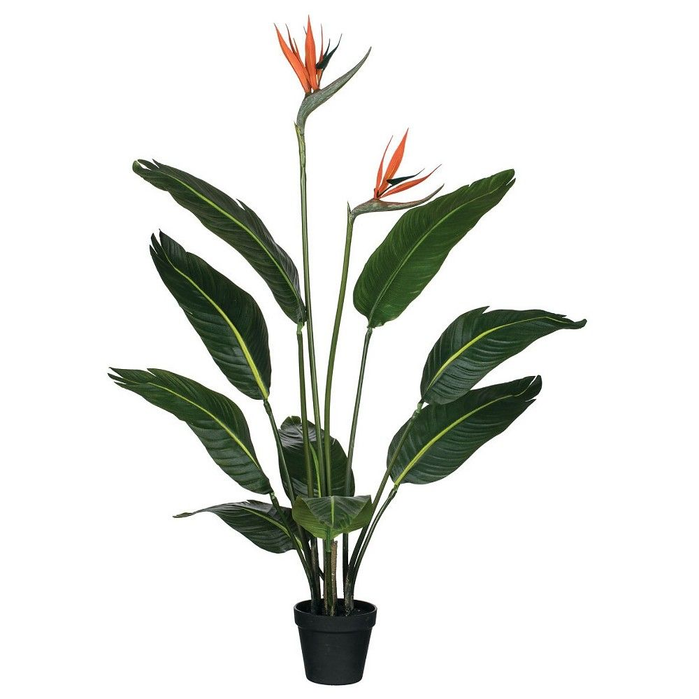 Sullivans Artificial Bird Of Paradise With Blooms Tree 39 H Green In 2020 Potted Trees Planting Flowers Birds Of Paradise Flower