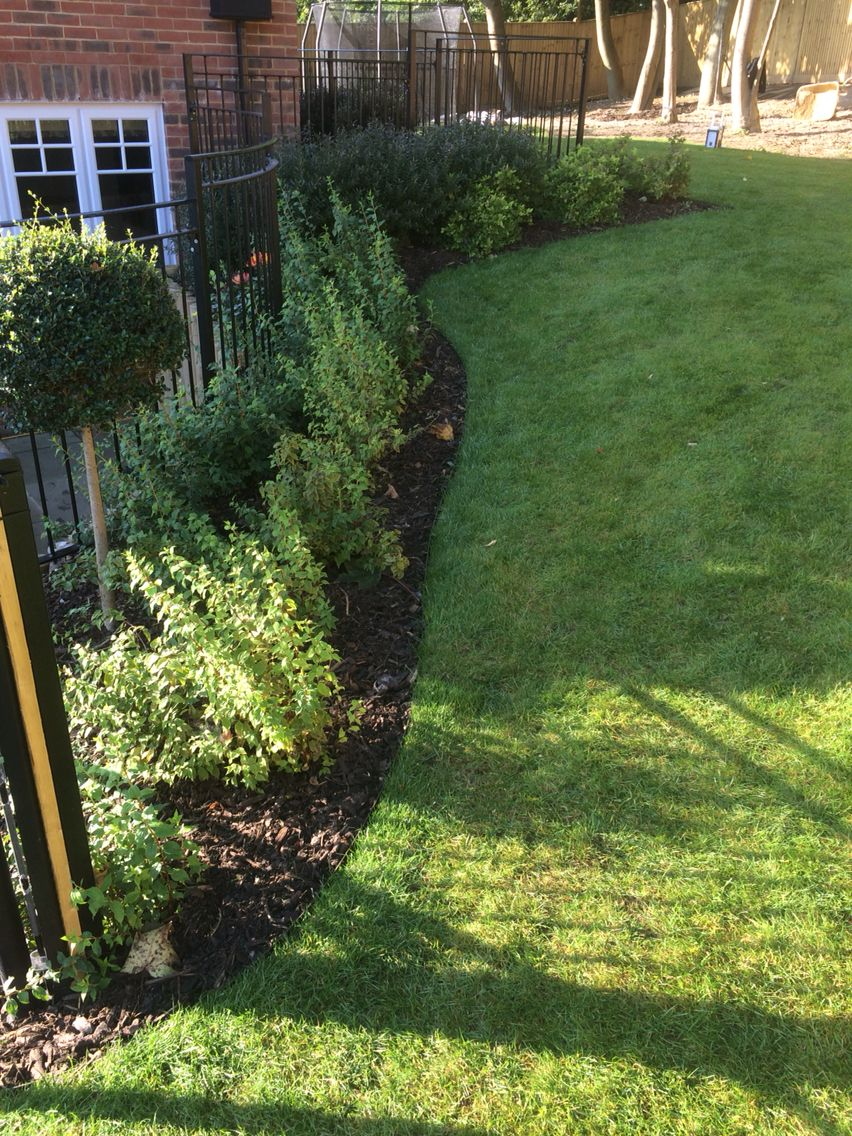 everedge used to define boundary between lawn and beds completed