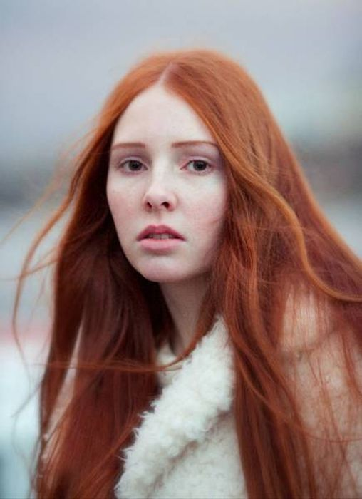 Explore German Redhead World Photo And More