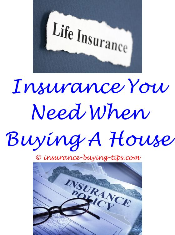 Quote A Car Insurance Review | Renters Insurance, Term Life Insurance And Term  Life
