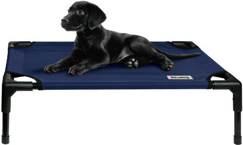 25 46 39 99 Kakadu Pet Elevated Pet Cot Marine Blue Small 24 X 18 X 7 The Pet Cot Is Ideal For Home Dog Treat Storage Elevated Dog Bed Puppy Pens