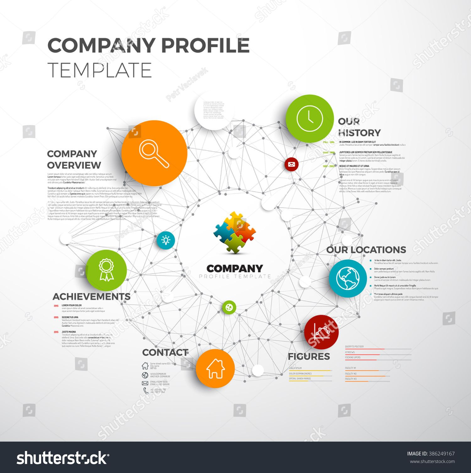 vector company infographic overview design template with network in