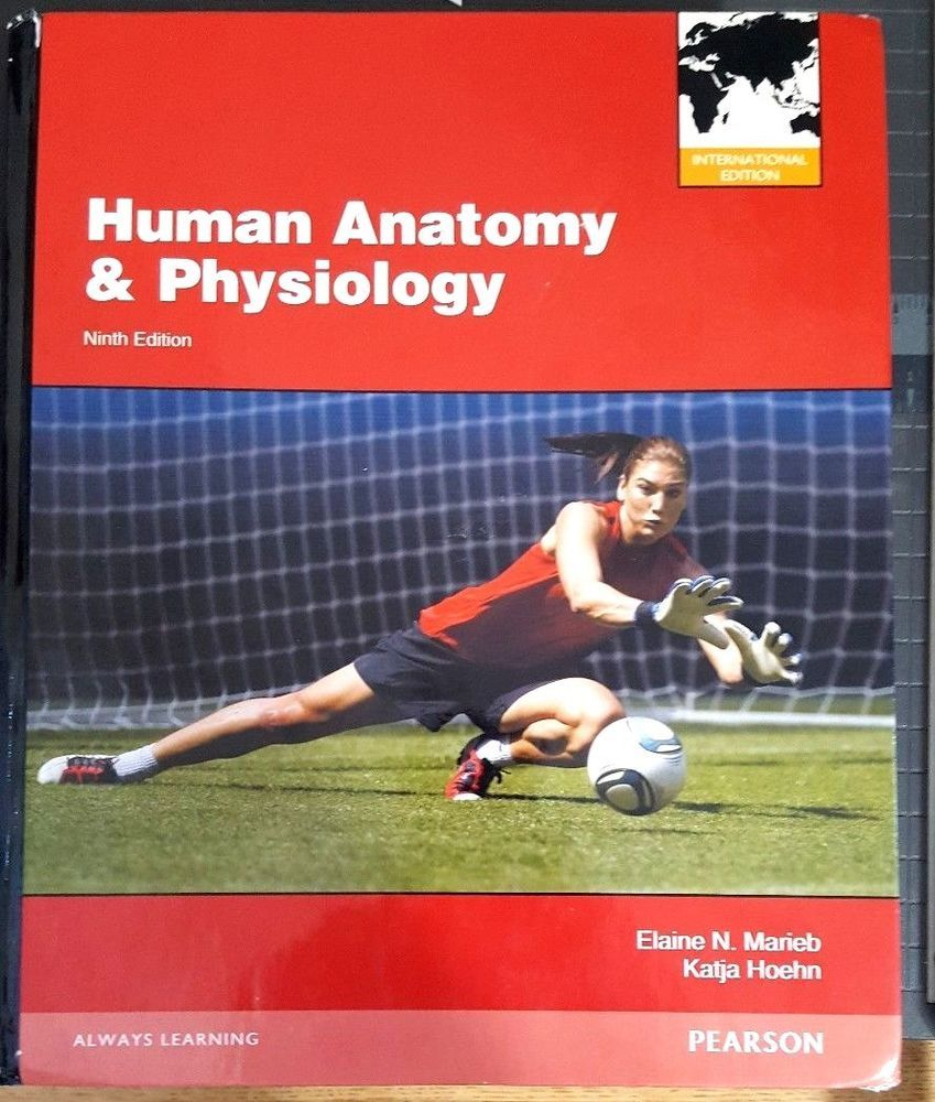 Bonito Anatomía Y Fisiología Humana 9ª Edición Pdf Marieb ...