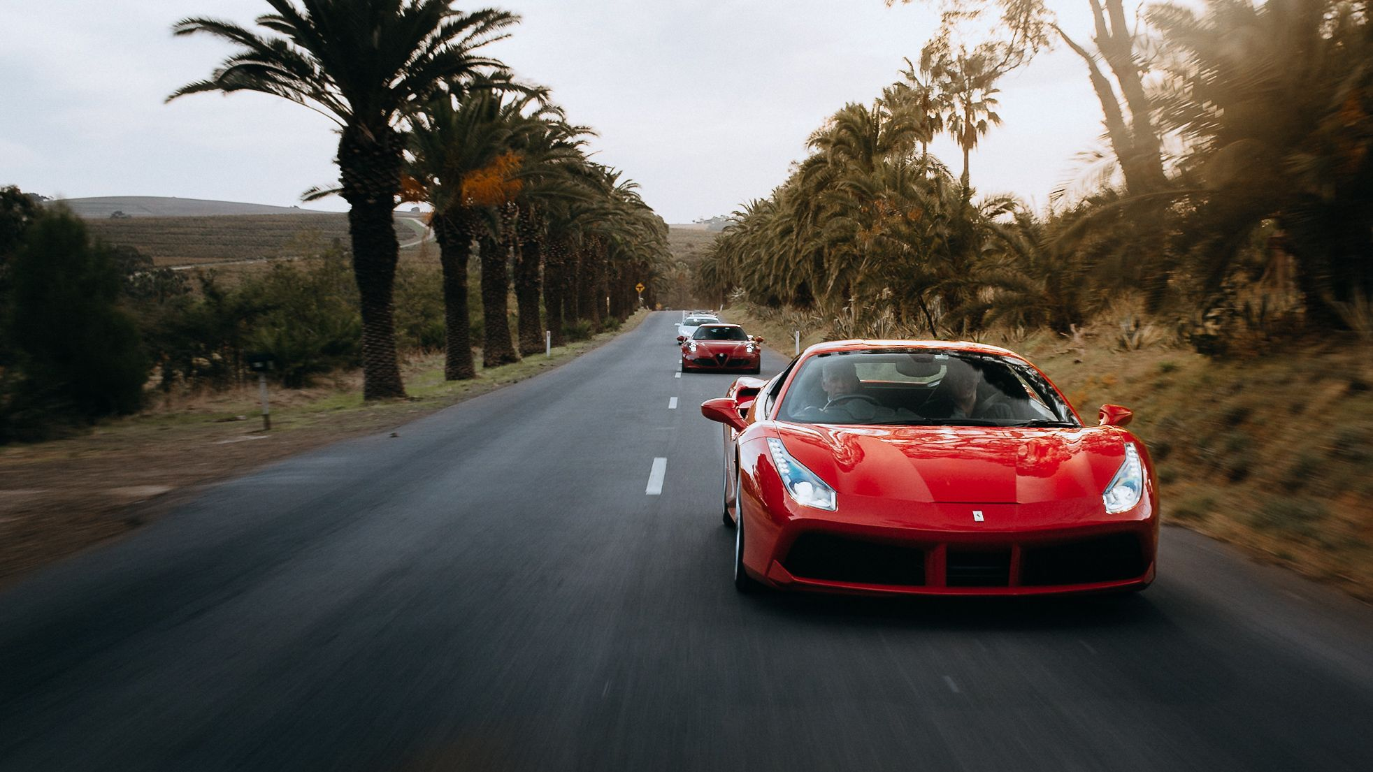 Supercars Driving Along This Beautiful Road Lined With Palm Trees In The Barossa Valley Supercar Driving Experience Super Cars Driving Experience
