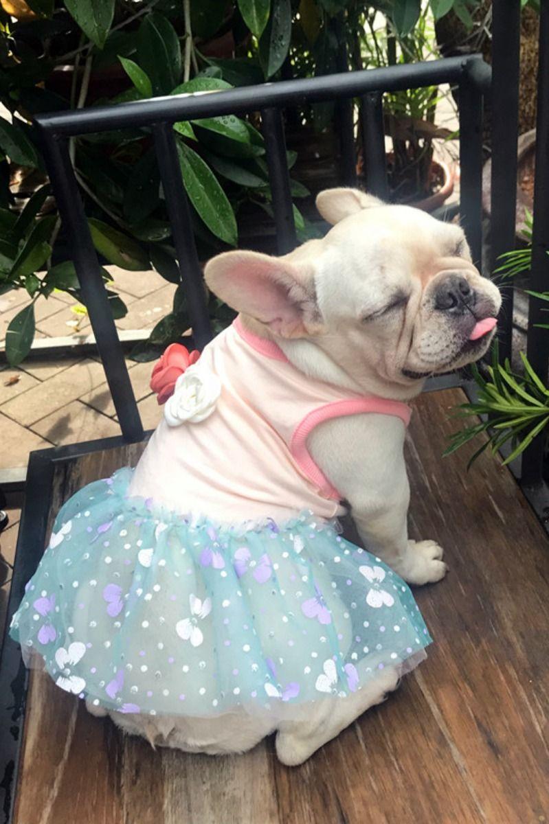 Comfy Dog Clothing Female Summer Dress Shirts For Medium Dogs