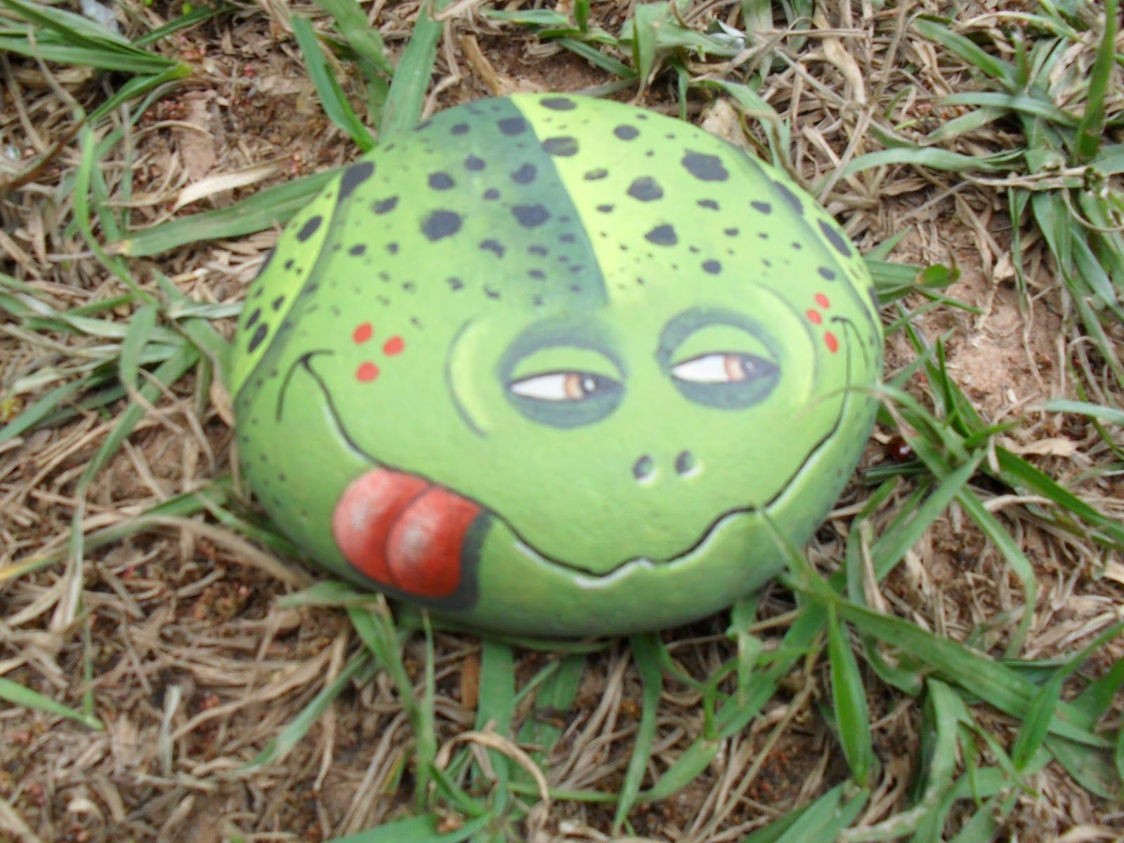 Рисунки лягушек на камнях для сада фото