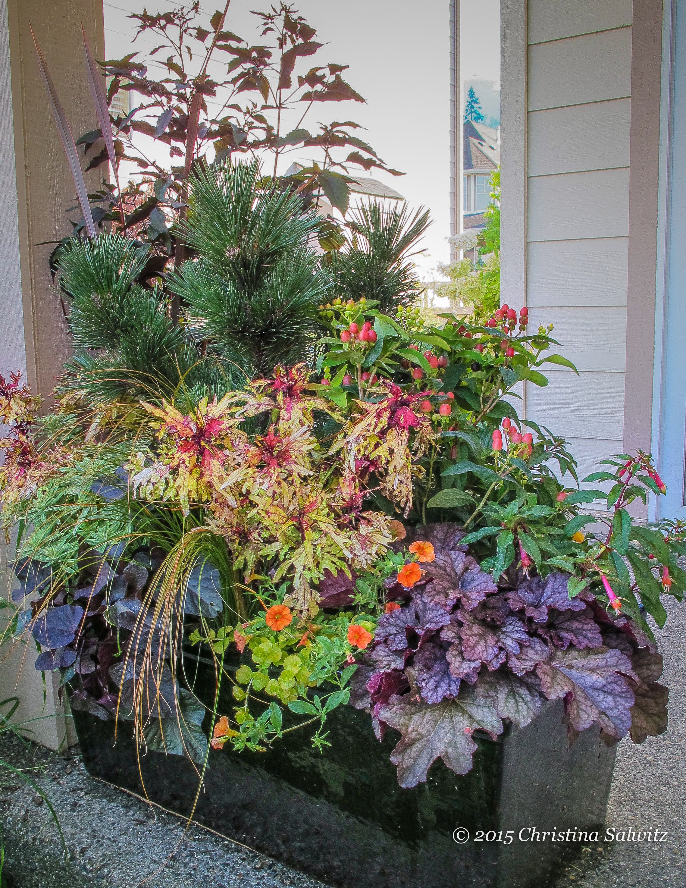 A Container Garden Designed To Feature The Bounty Of Fall Plants